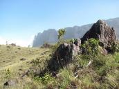 Фото из тура в Венесуэлу в феврале-марте 2012. Еще немного и достигнем подножия Рораймы.