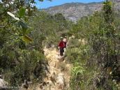 Фото из тура в Венесуэлу в феврале-марте 2012. Подъем на Рорайму начинается с коварных глиняных ступеней.