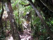 Фото из тура в Венесуэлу в феврале-марте 2012. Носильщик на тропе. Вес груза - 15-20 кг
