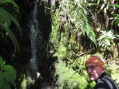 Фото из тура в Венесуэлу в феврале-марте 2012. Периодически тропу пересекают родники и ручейки. Так что с утолением жажды проблем нет.