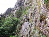 Фото из тура в Венесуэлу в феврале-марте 2012. Здесь до стены уже можно дотронуться рукой.