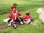 путешествие в Перу и Боливию, Куско, перуанка с ламами