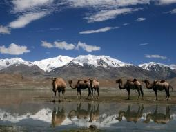 Путешествие по Средней Азии, Путешествие по Фанским горам, Путешествие по Узбекистану, Путешествие по Таджикистану