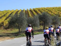 велотур в Тоскану