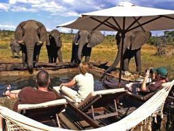 Сафари в Национальном парке Хванге, Зимбабве